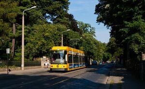 Lene-Glatzer-Straße lijn6 NGT6DD