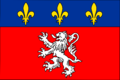 Flag Métropole de Lyon.png