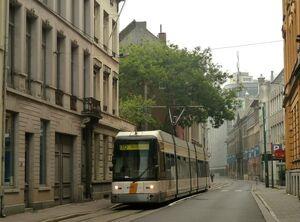 Sint-Jacob lijn10 Hermelijn
