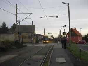 Gerhart-Hauptmann-Straße lijn4 NGT6DD