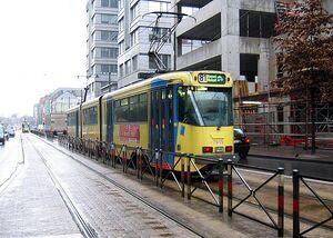 Zweden lijn81
