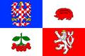 Flag Kraj Vysočina.png