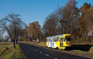Ignacew lijn43 802N