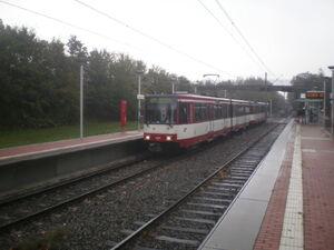 SPA254326Lohausen 4201