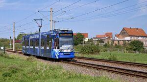 Daspig lijn5 MGT6D