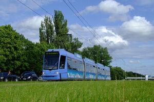 Borstei lijn21 R33