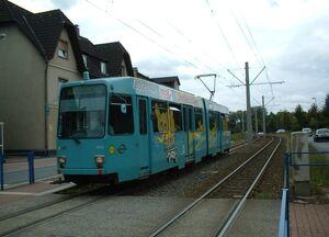Pungesfeld lijn308 M