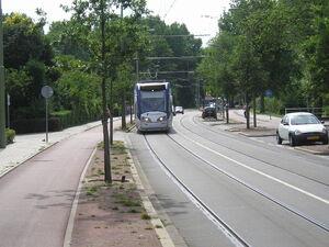 LP8099131Aaltje Noordewierstraat