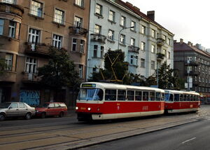 Bohemians lijn24 T3R.P