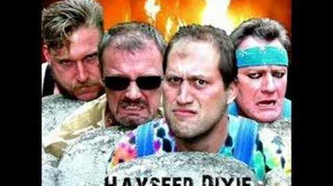 Hayseed Dixie - Cat Scratch Fever