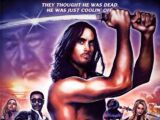 Episode 60 - Samurai Cop 2: Deadly Vengeance