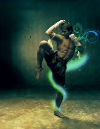 Tony Jaa New HD Wallpapers 2012 01