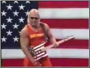 Hulk hogan guitar