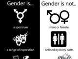 Gender and Identity 101