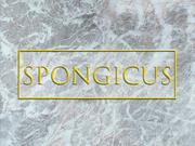 Spongicustitlecard