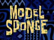 ModelSpongetitlecard