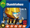 A C Sol - Bumblebee box 11