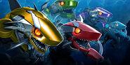 Sharkticons newsfeed