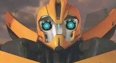 Bee (Prime)