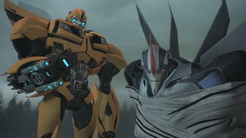 Bumble Bee & Starscream