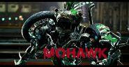 TLK 0h41m41s (Mohawk)