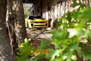 Transformers 5 Set Bumblebee