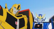 Robots In disguise 2015 Bee and Strongarm