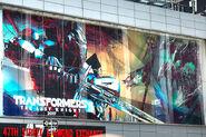 Optimus Poster TF 5 Board