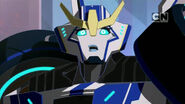 Strongarm Rid 2015 face