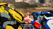 Denny, Bumblebee and Strongarm