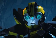 Bumblebee Can Speak