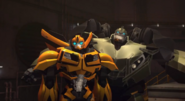 Bulkhead questions Optimus