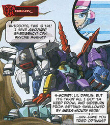 DWSummerspecial RID Autobrothers Megs