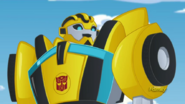 Bumblebee (Sounds great.)