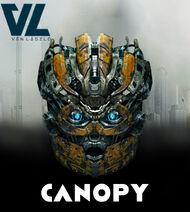 La cabeza de canopy