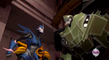 Arcee and Bulkhead argue