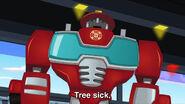 Tree sick