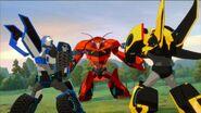 Strongarm Bisk Bumblebee