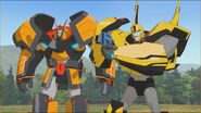 Bumblebee with Drift