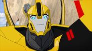 Bumblebee smiling