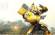 Bumblebee gallery bg