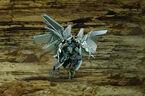 Flyingdrone battleforthematrix copy