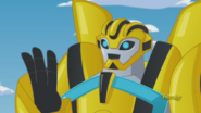 Bumblebee (New Mission)