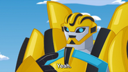 Bumblebee voice is back (RB)