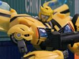 Bumblebee (Ascension)