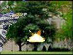 Wmplayer 2014-12-09 10-58-20-47