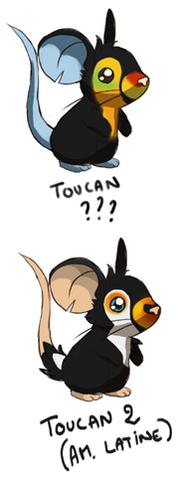 Fourrure de toucan croquis