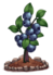 Blueberries (fully grown) - Farming 2016