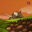 Riddle screenshot