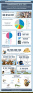 Transformice 2015 statistics